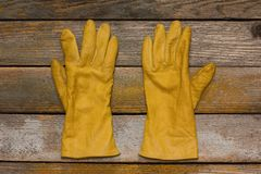 Womens gloves Royalty Free Stock Photo