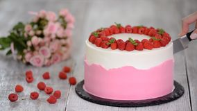 Womens hands cut a delicious summer cake with raspberry. Womens hands cut a delicious summer cake with raspberry stock footage