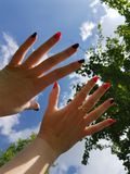 Womens hands. Fingers nails black red sky tree leaves green blue two ten ring royalty free stock photography