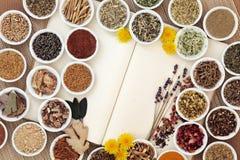 Womens Herbal Health Stock Photography