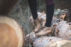 Womens leather casual shoes. On wood in the forest Royalty Free Stock Image