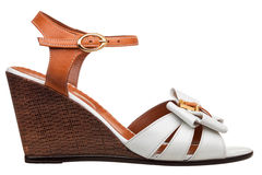 Womens sandals Stock Photography