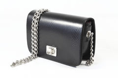 Womens shiny clutch day handbag Royalty Free Stock Photography