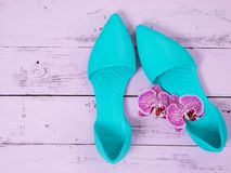 Womens shoes flat sandals on wooden background. Spring summer collection. Flat lay. Fashion concept. Template for online store. Coupon, offer, promotion royalty free stock photo