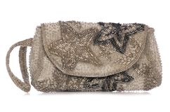 Womens silver glittery purse Royalty Free Stock Photo