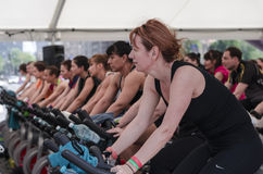 Womens at spinning class Stock Photography