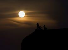 WomeTwo尾随在峭壁的剪影有从hig的被弄脏的月亮视图 免版税库存照片