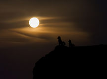 WomeTwo poursuit la silhouette sur la falaise avec la vue brouillée de lune du hig Photo libre de droits