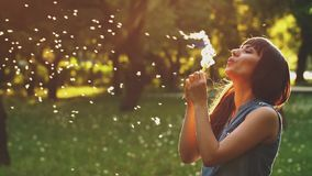 Womna Blow Dandelion at Sunset. Woman blowing dandelion seeds at sunset stock footage