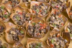 Won Ton Appetizers Closeup Stock Photos