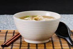 Won Ton Soup. Asian Won Ton Dumpling Soup Stock Photo
