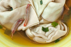 Won Ton Soup in a Bowl Stock Photo