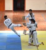 Wondefulscène van Taekwondo competiton stock foto's