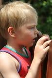 Wonder. Boy looking ower fence royalty free stock photos