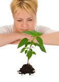 Wonder of a new life. Woman wondering on the mistery of life - gazing at a beautiful plant - isolated royalty free stock images