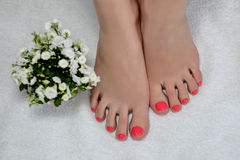 Wonder pink pedicure with a three tulips Royalty Free Stock Photo