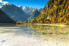 Wonderful alpine lake with high peaks in background, Dolomites, Italy. Majestic autumn landscape, alpine glacier lake and yellow pine trees, Landro Durrensee Stock Photography