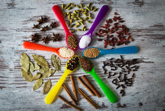 Wonderful aromatic spices in the colorful spoons in the form of a circle on a table. Stock Photography