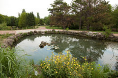 Wonderful artificial pond in city park Stock Photos