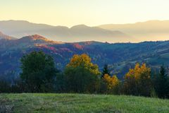 Wonderful autumn landscape at dawn. Beautiful countryside scenery in mountains. trees in colorful foliage. rural area of carpathians. distant ridge in glow of royalty free stock photography
