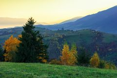 Wonderful autumn landscape at dawn. Beautiful rural scenery in mountains. trees in colorful foliage. distant ridge in glow of sunlight royalty free stock photo