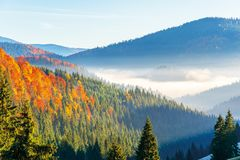 Wonderful autumn sunrise in mountains stock photography