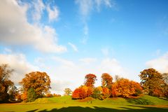 Wonderful autumnal scene in the park Stock Photos