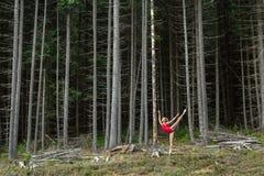 Ballet dancer posing outdoors stock images