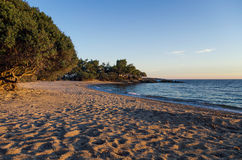 Wonderful beach at dusk in Chalkidiki, Greece Royalty Free Stock Photo