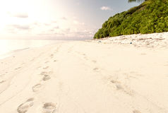 Wonderful beach of Thoddoo, Maldives Stock Photos