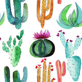 Wonderful beautiful bright mexican tropical hawaii floral pattern colorful cactus with flowers vertical pattern paint like child w Stock Images