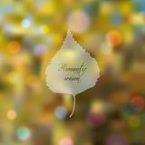 Wonderful bokeh autumn background. With birch leaf silhouette Royalty Free Stock Photo