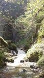 The Wonderful Bridges. Wonderful nature in Bulgaria stock photo