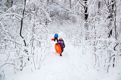 Wonderful child in the snowy woods Royalty Free Stock Image