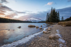 Wonderful colorful sunrise above morning mountain lake with small tree island and high snowy peak in back, Two Jack Lake, Banff na Royalty Free Stock Images