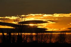Wonderful colors of the sunset. Wonderful colors of sunset, gray, yellow, gold and red, glimmers of light in the trees Stock Photos