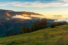 Wonderful countryside in mountains. Glowing fog rolls above the hill. fence and trees on grassy hill. wonderful morning light royalty free stock images