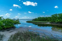 Wonderful Day st the Park. Spent a wonderful day at Cypress Point Park in Tampa Florida royalty free stock photography