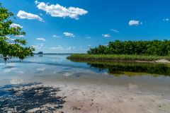 Wonderful Day st the Park. Spent a wonderful day at Cypress Point Park in Tampa Florida stock image