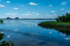 Wonderful Day st the Park. Spent a wonderful day at Cypress Point Park in Tampa Florida stock images