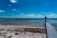 Wonderful Day st the Park. Spent a wonderful day at Cypress Point Park in Tampa Florida royalty free stock image
