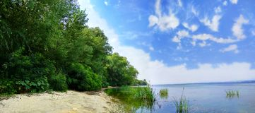 Wonderful  Dnieper River. Вeach with lush willows and blue sky. Stock Photo