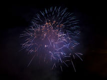 Wonderful fireworks at night Royalty Free Stock Photos