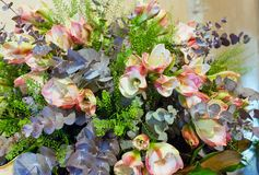 Wonderful flowers bouquet Royalty Free Stock Photo