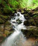 Wonderful forest waterfall. Ukrainian Carpathians royalty free stock photos