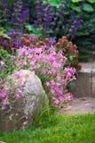 Wonderful garden Stock Photography
