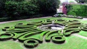 A wonderful garden stock video