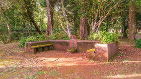 2 Old Bench royalty free stock photos