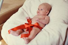 A wonderful gift Royalty Free Stock Photo