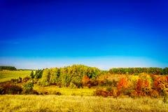 Wonderful golden autumn. Royalty Free Stock Photos